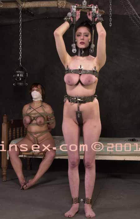 Insex video